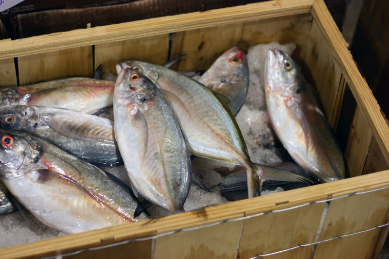 A visit to fulton street fish market part 2 hunts point for New fulton fish market